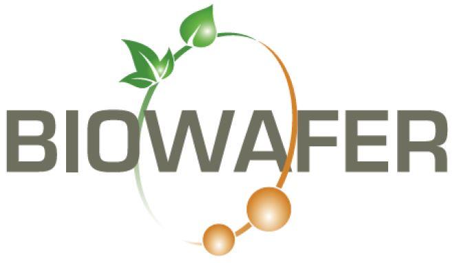 Progetto Biowafer